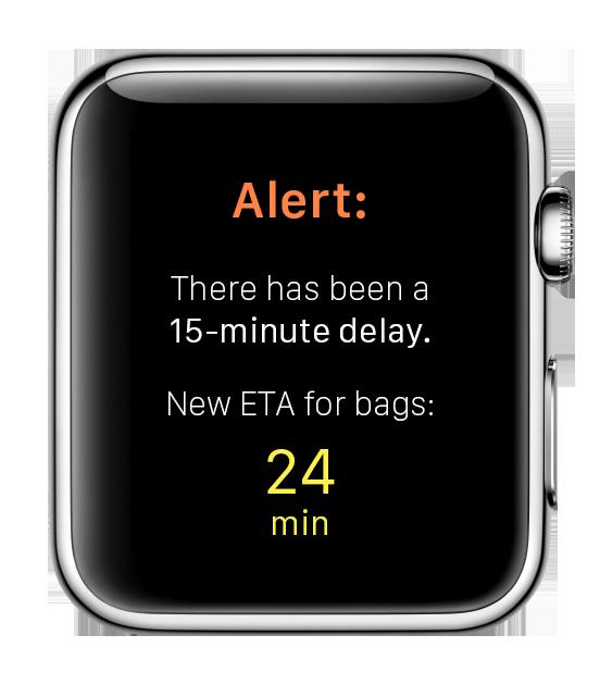 bagBuddy-delay-text.png