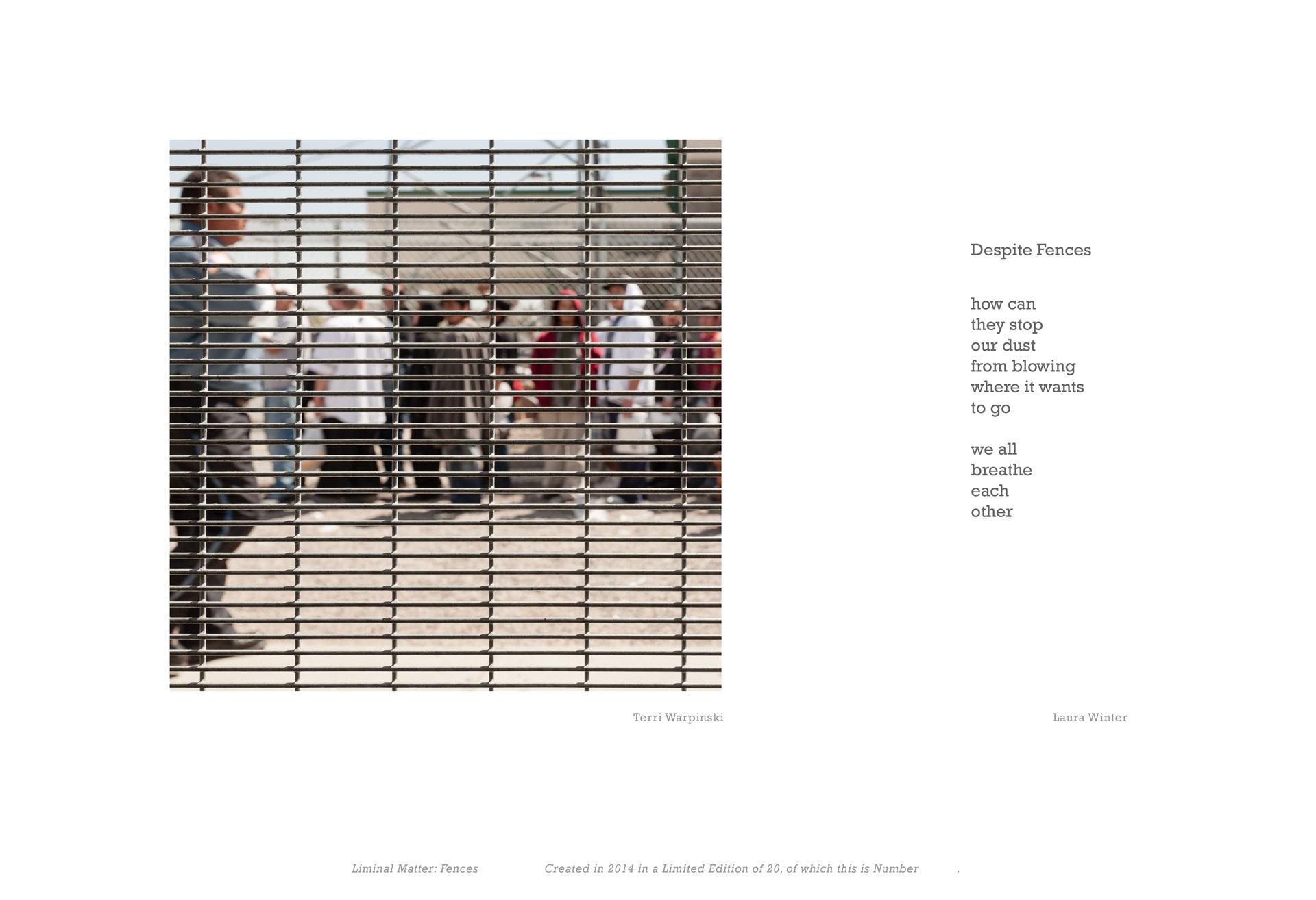 """Despite Fences"" from the portfolio LIMINAL MATTER: FENCES"