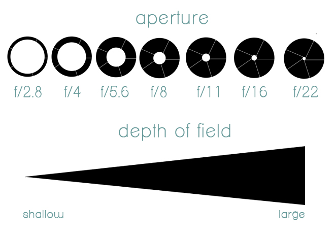 As you can see for yourself, higher f-stop numbers means the lens is more closed taking in little light
