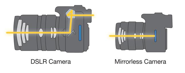 Observe the mirror box inside the DSLR camera, look real closely.