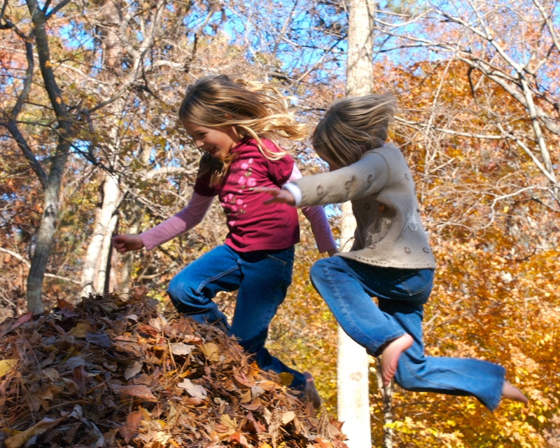 kids playing in leaves.jpg
