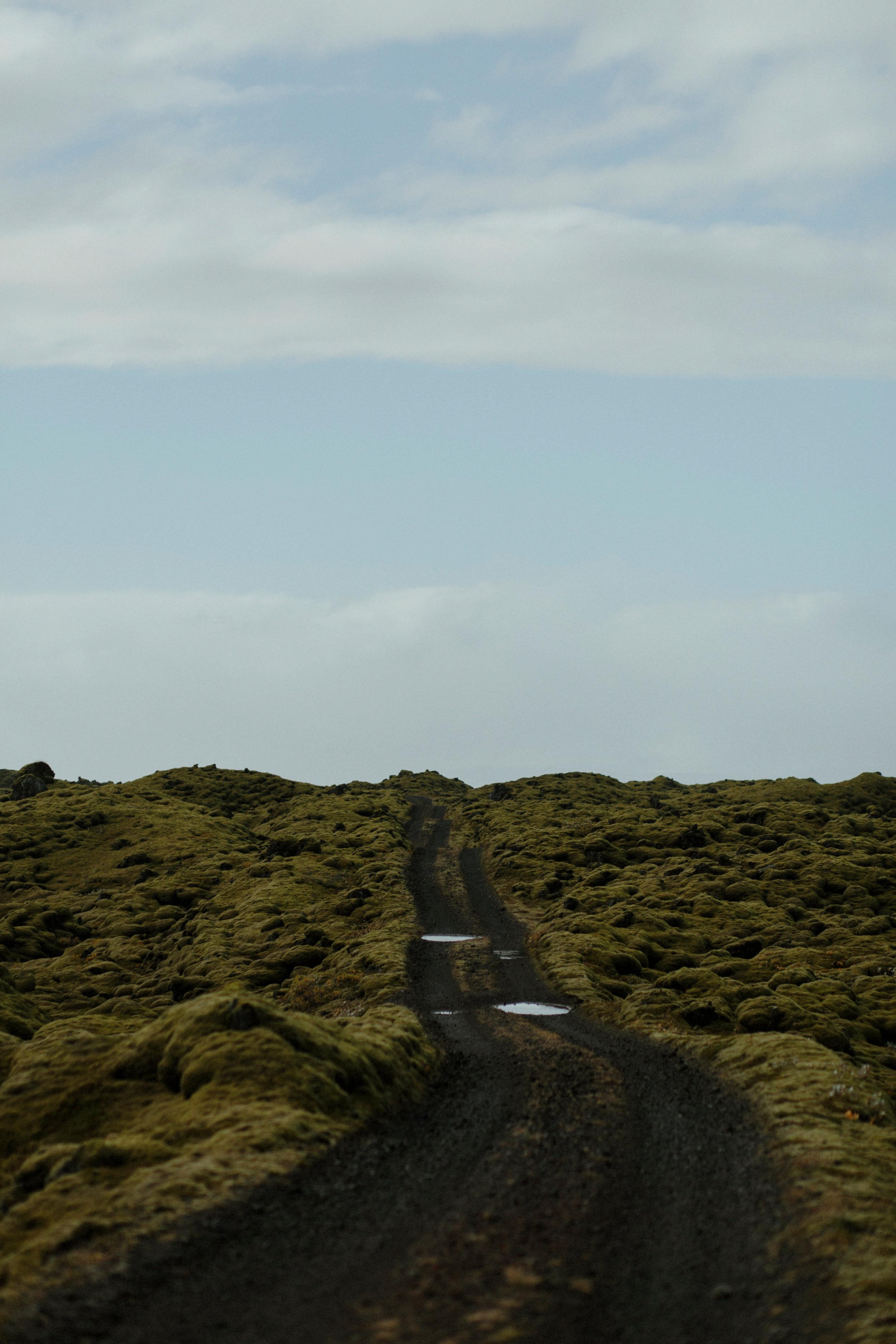 Iceland South Region-82Iceland South Region Grain.jpg