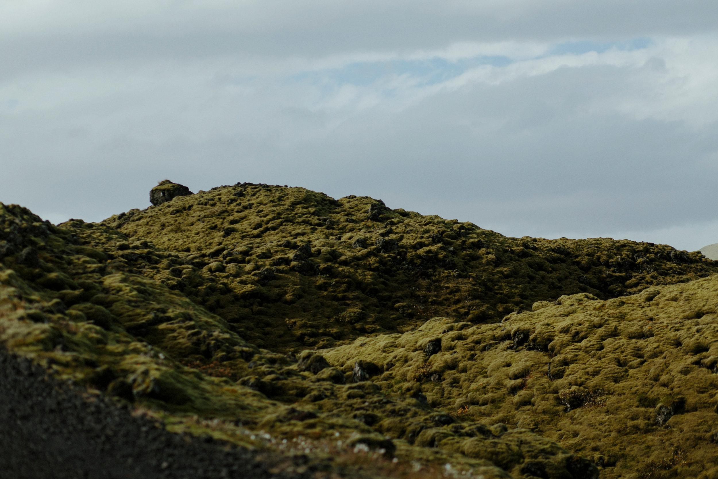 Iceland South Region-78Iceland South Region Grain.jpg
