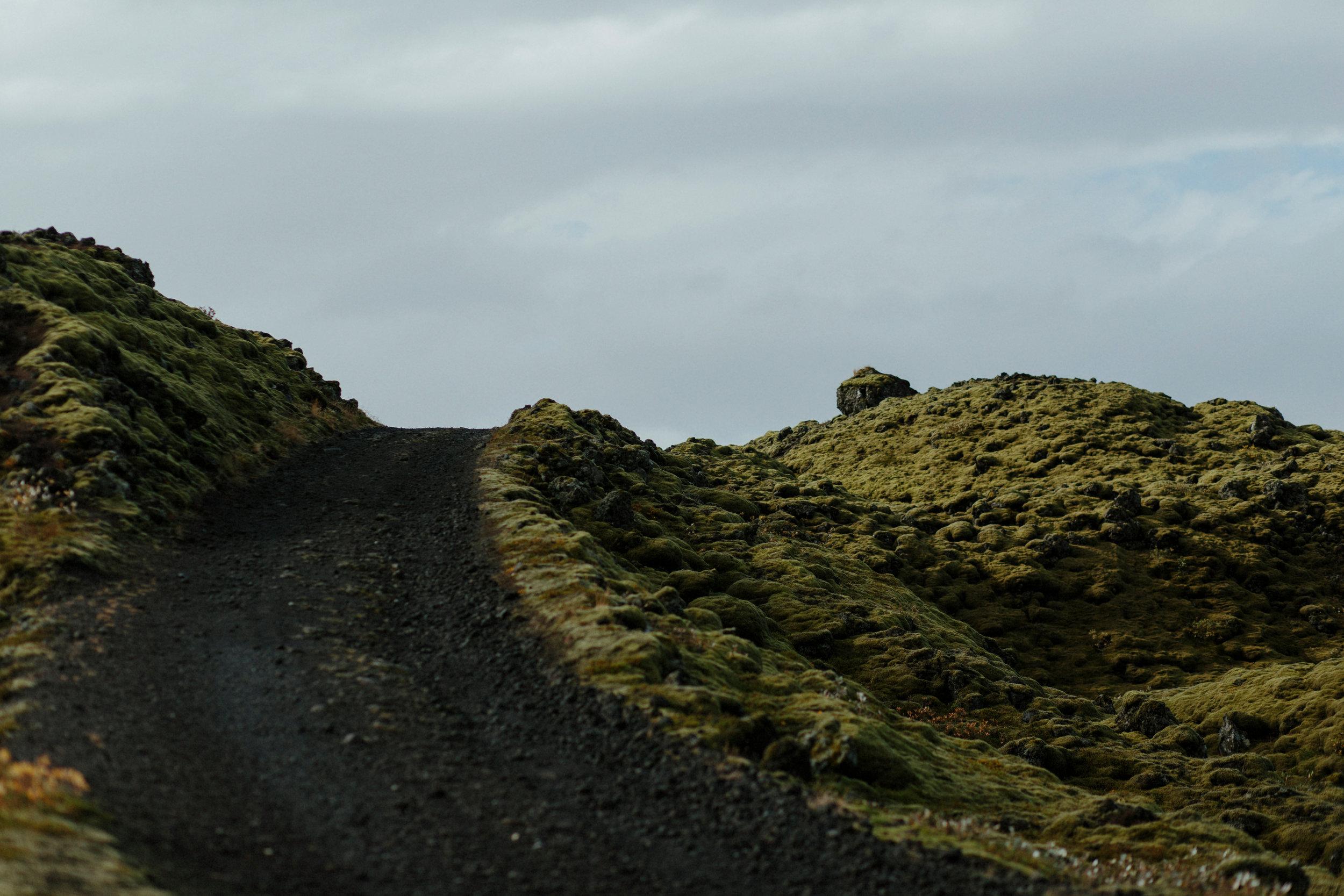 Iceland South Region-77Iceland South Region Grain.jpg