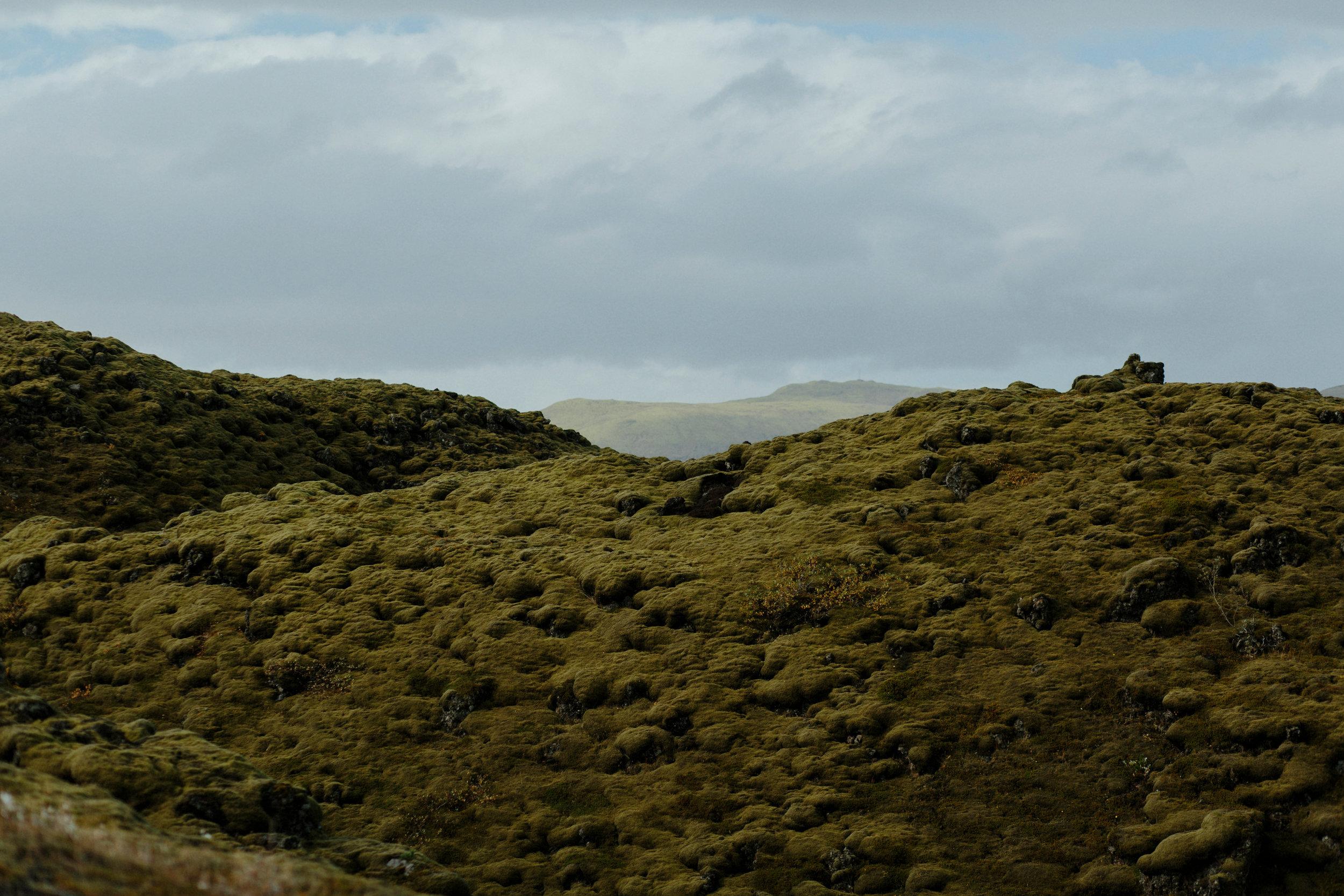 Iceland South Region-76Iceland South Region Grain.jpg