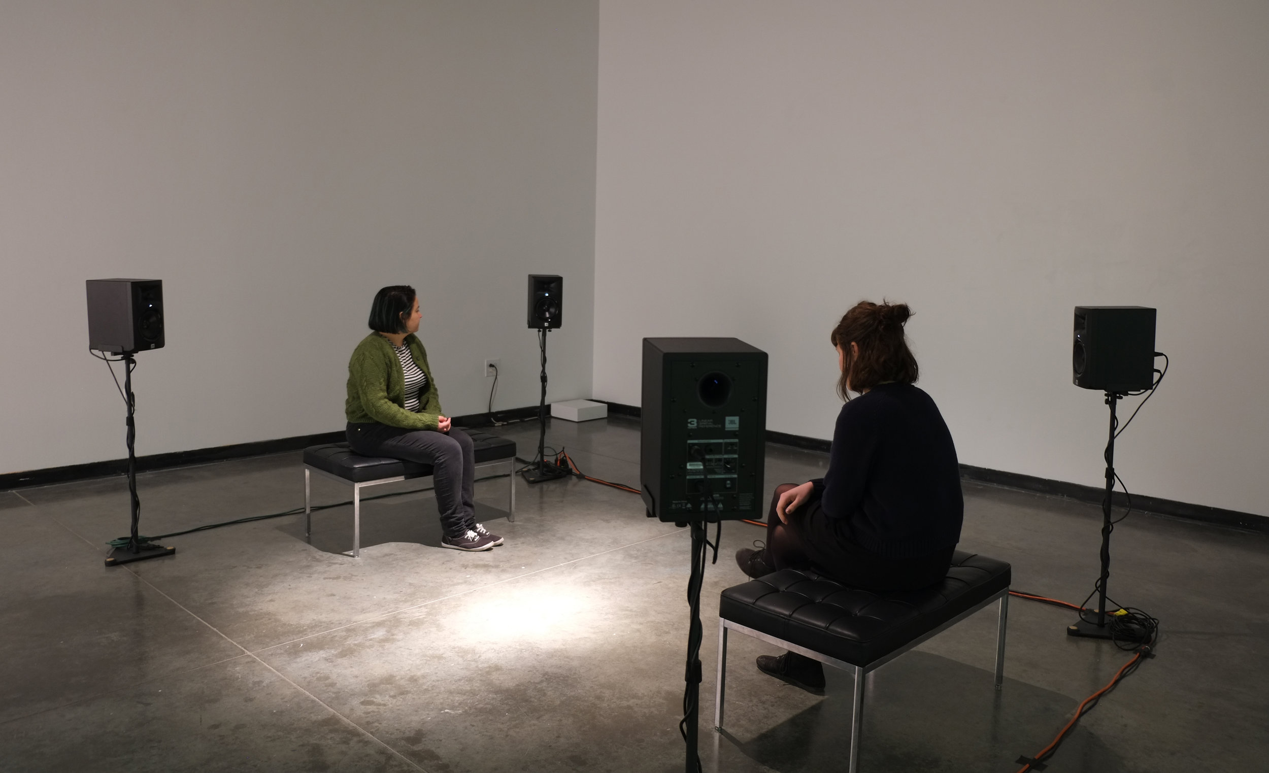 omniscience and oblivion,  2015 installation view at the basile gallery of the herron school of art and design, indianapolis (2017)  listen to a sample on  soundcloud    Omniscience and Oblivion  (2015) explores the function of individual memories to speak to the existence of a collective or shared experience. For the project, I created an audio archive where participants were invited to anonymously share, via an online form, one memory they would like to keep forever and one they would like to let go. From these written contributions I recorded voices of different individuals reading a stranger's memories. In the audio installation, each memory is therefore mediated: by the writer's choice of words and grammar, by the reader, and by the presentation. By listening, the visitor can interpret the connection or disconnection between the voice and the memory being recalled.