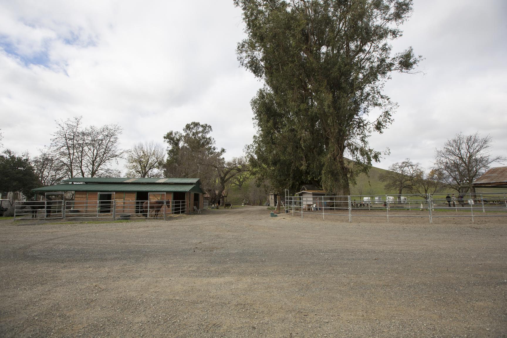 *ranch-2201.jpg