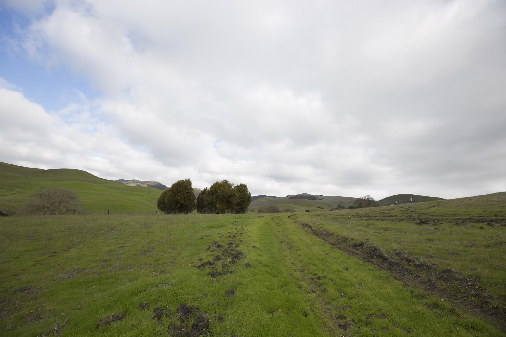 ranch-2305.jpg