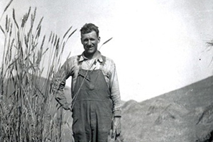 "Henry Reinstein standing at 5'11"" among their award winning wheat."