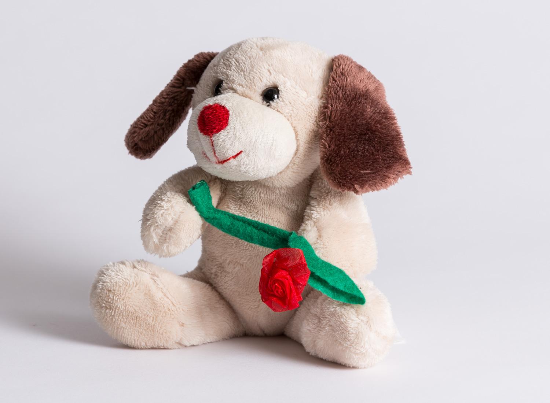 Stuffed Dog - extra