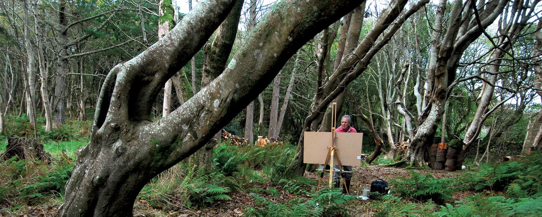 Glen painting in Kiloran Woods, Colonsay_3687 2.jpg