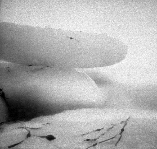 Iceberg12015.jpg