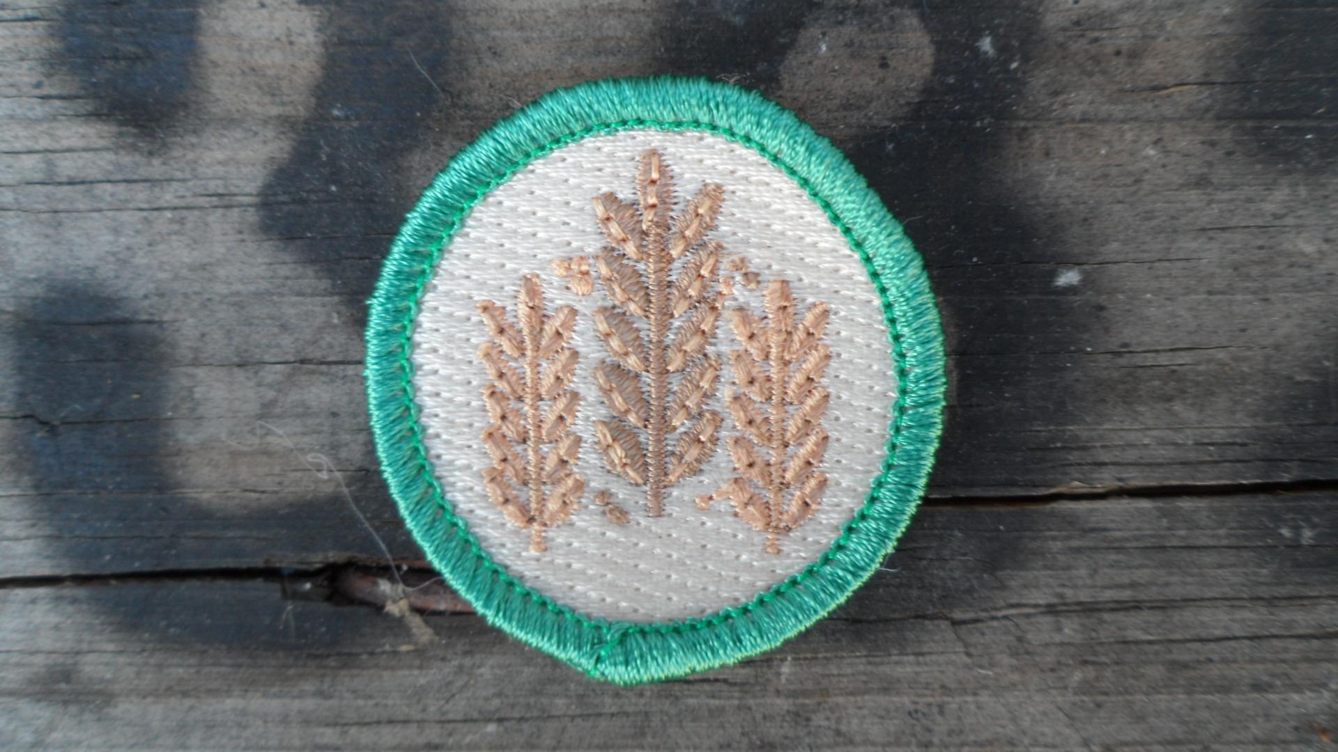 craft beer badge