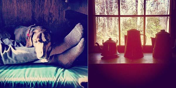 anna michener cabin