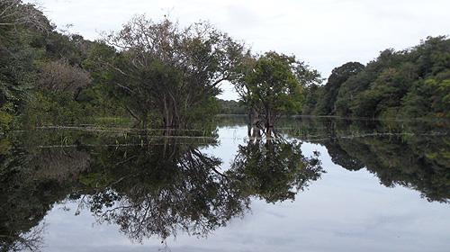 manaus-brazil-rio-negro-reflection