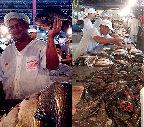 manaus-brazilfish-market