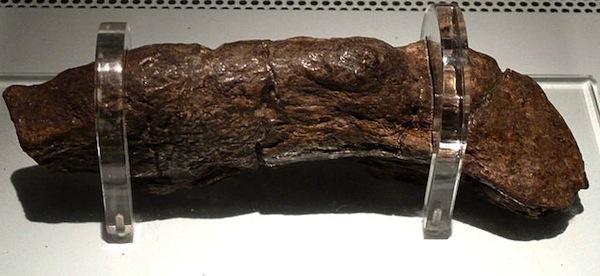 viking-museum-historical-sites-3