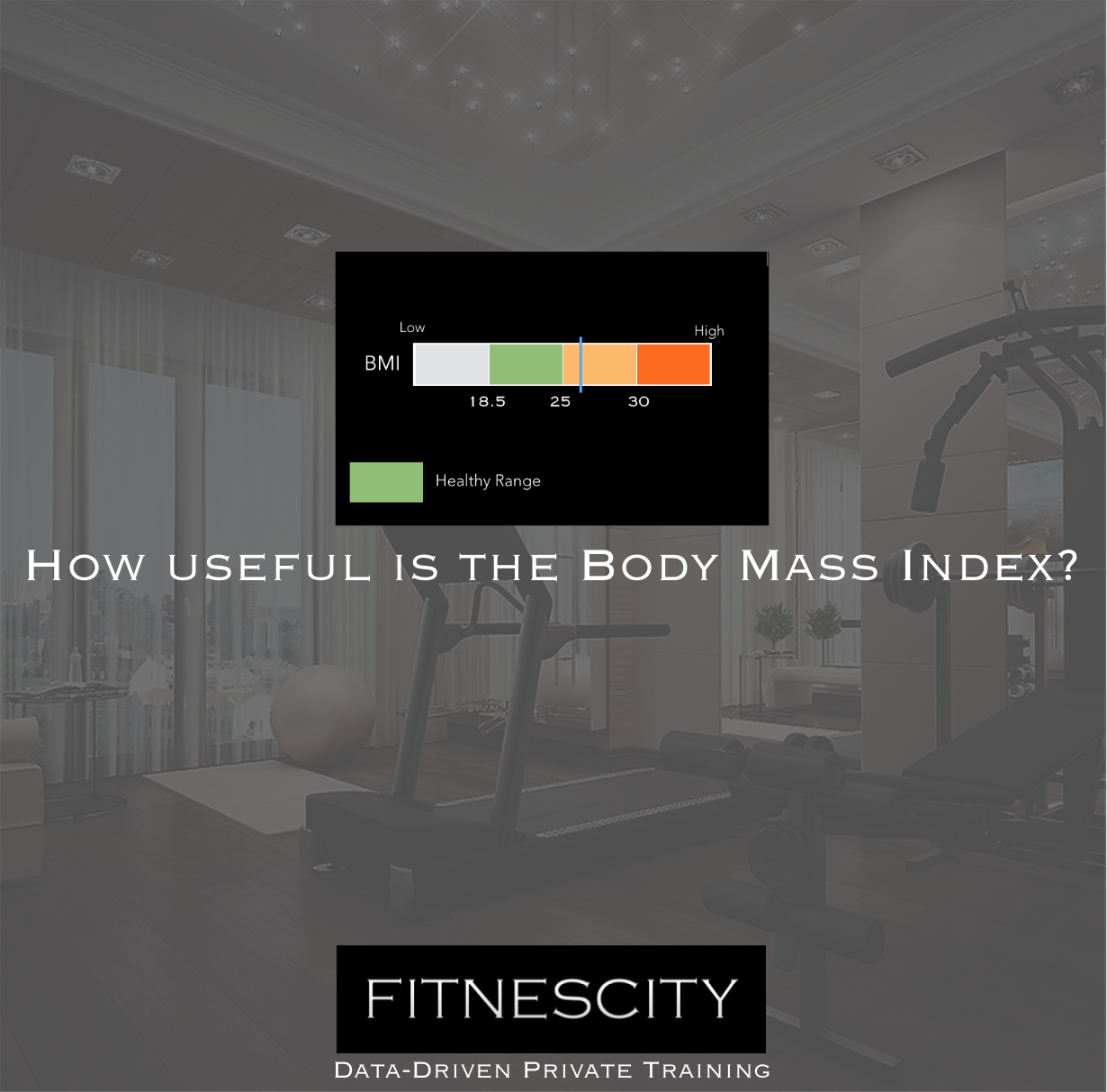 How Useful is the BMI (Body Mass Index)