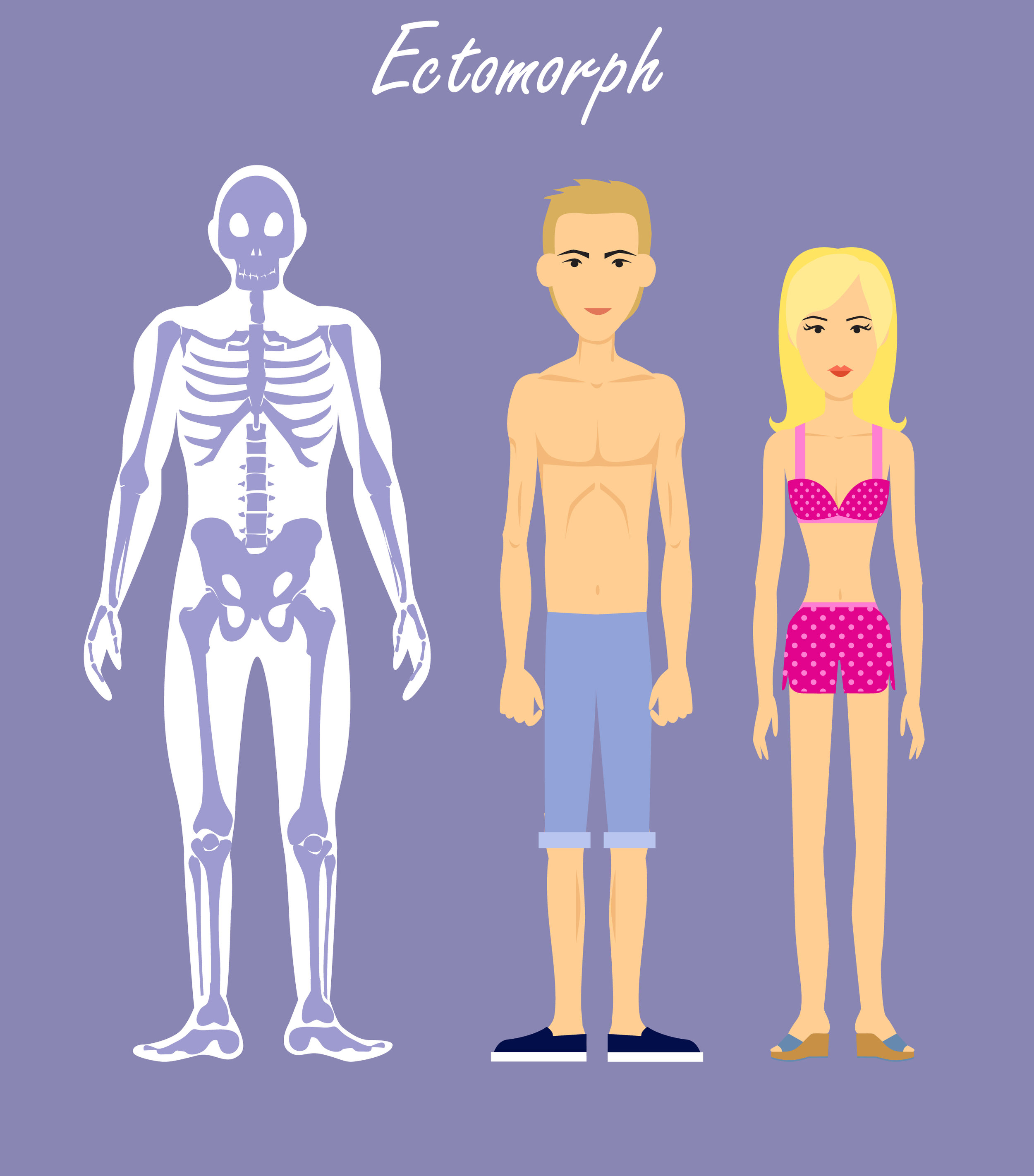 Ectomorph, Endomorph and Mesomorph: How to Eat and Exercise