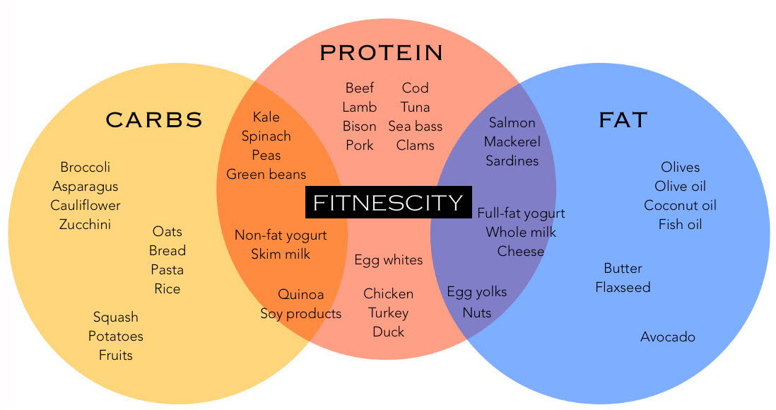Fitnescity Macronutrient Chart - Protein, Fat and Carbohydrates.jpg