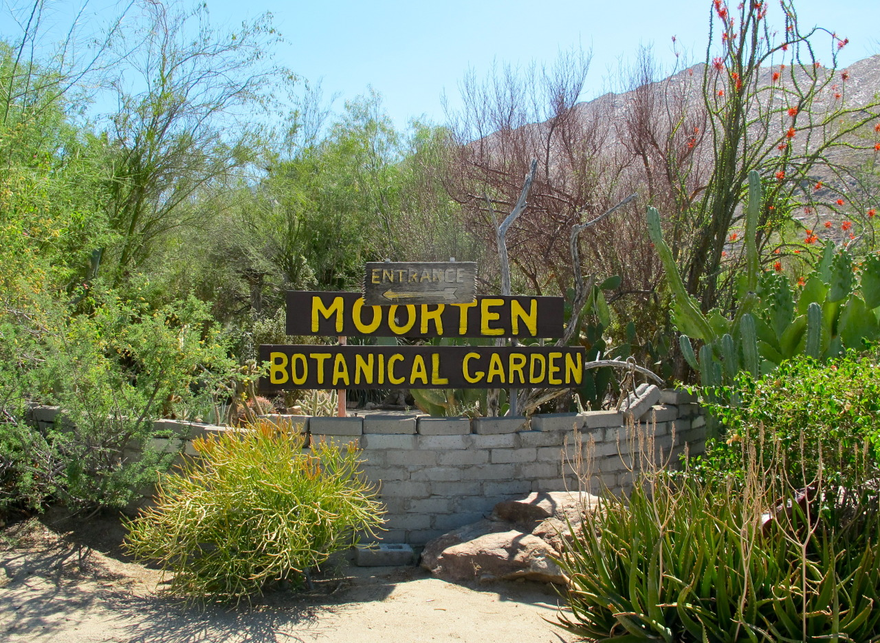 Things to do in Palm Springs // Soukie Modern
