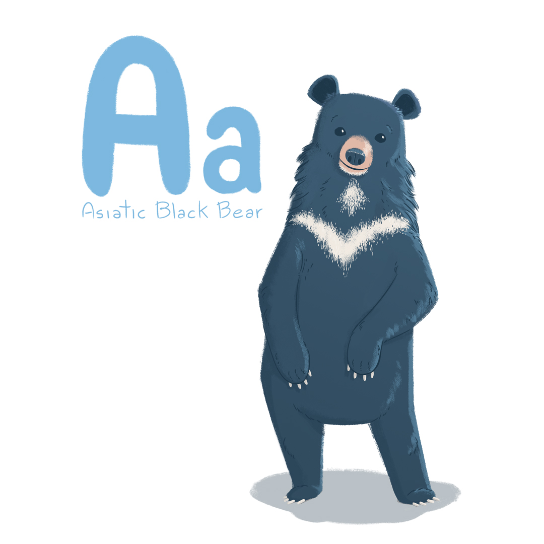 Asiatic_black_bear.jpg