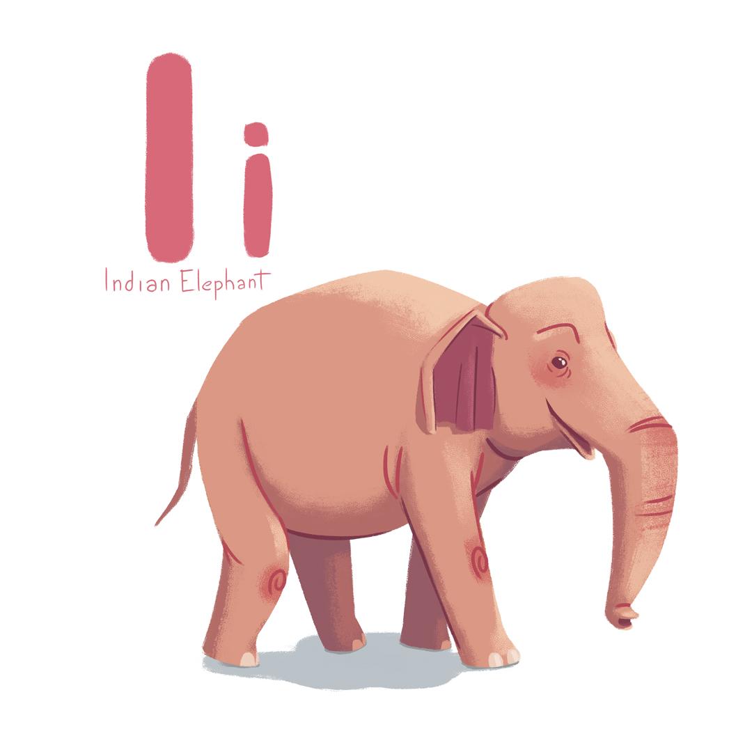 Indian_elephant.jpg
