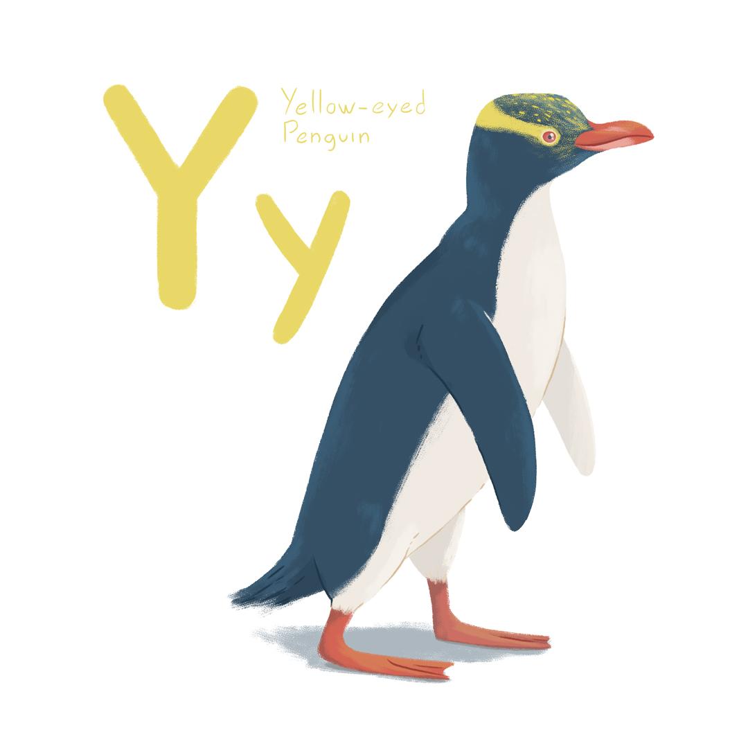 yellow_eyed_penguin.jpg
