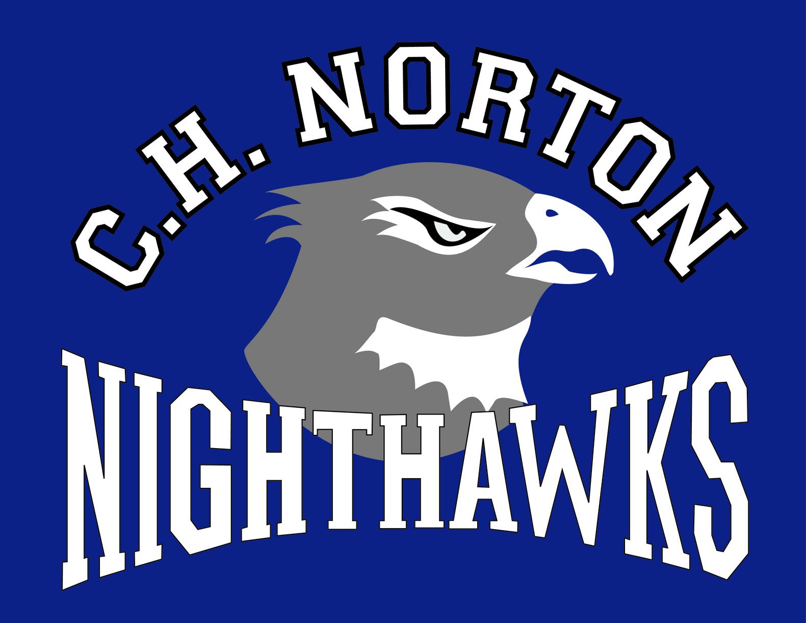 Nighthawks_Logo_Med.jpg