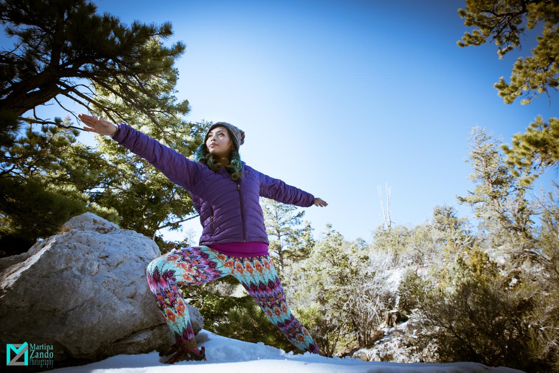 yoga photos mnt. charleston