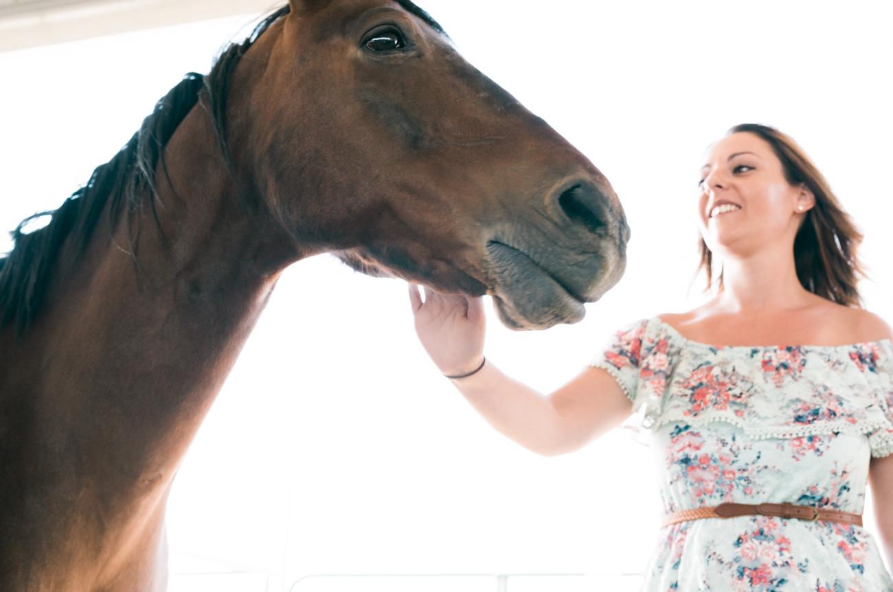 horses photos las vegas