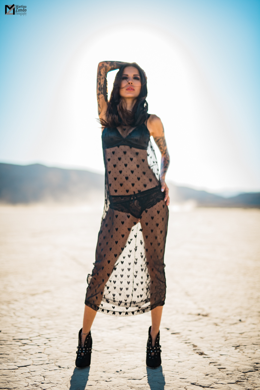 fashion inspired desert photo mesh dress Naty Ashba