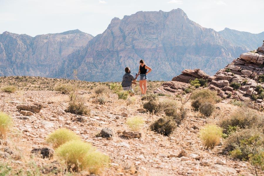 Desert Surprise Wedding Proposal