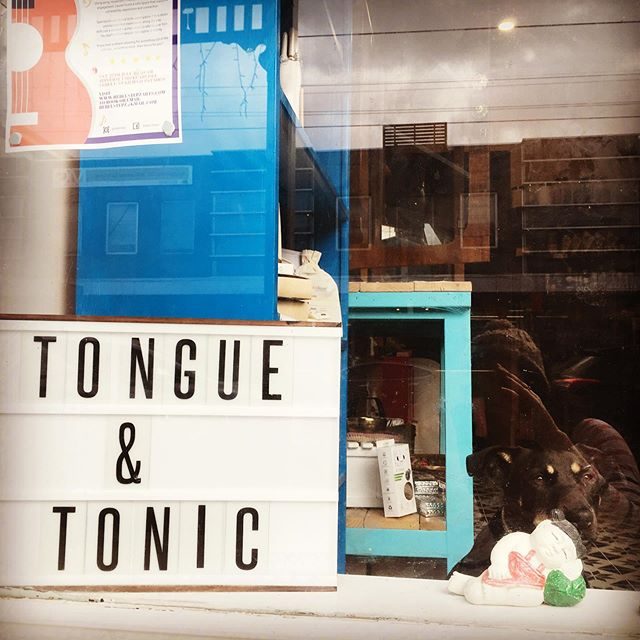 New shop alert! Many of you Elstie locals may have already seen it - if not, drop in and have a chat all things healing and health with Jemima @tonguetonic 🙌 Gosh we ❤️Elsternwick! ❌⭕️❌