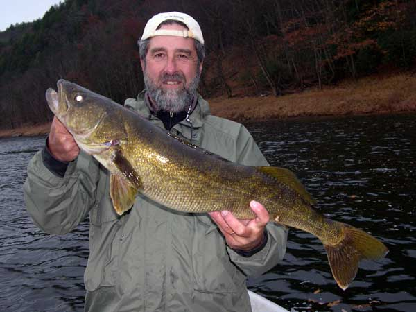 "31"" Monster Walleye with Sweetwater Guide Service, Delaware River"