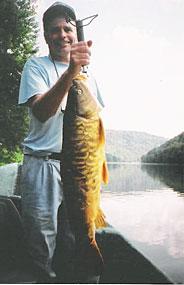 15 lb Carp! Delaware river Carp
