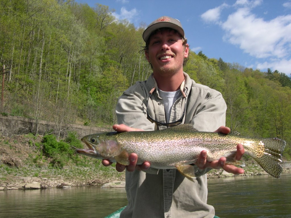 Big rainbow trout on the Delaware river fly fishing