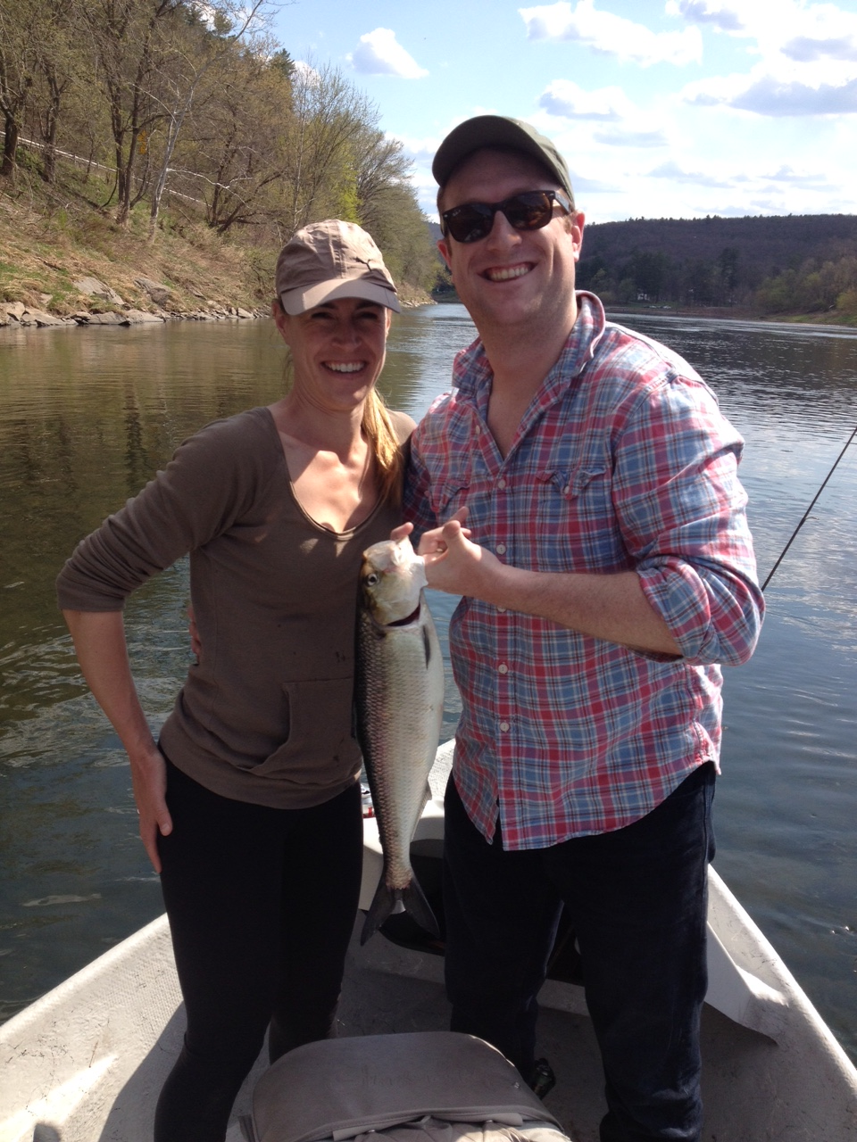 The NYC couple boated 7 Shad today, nice work!