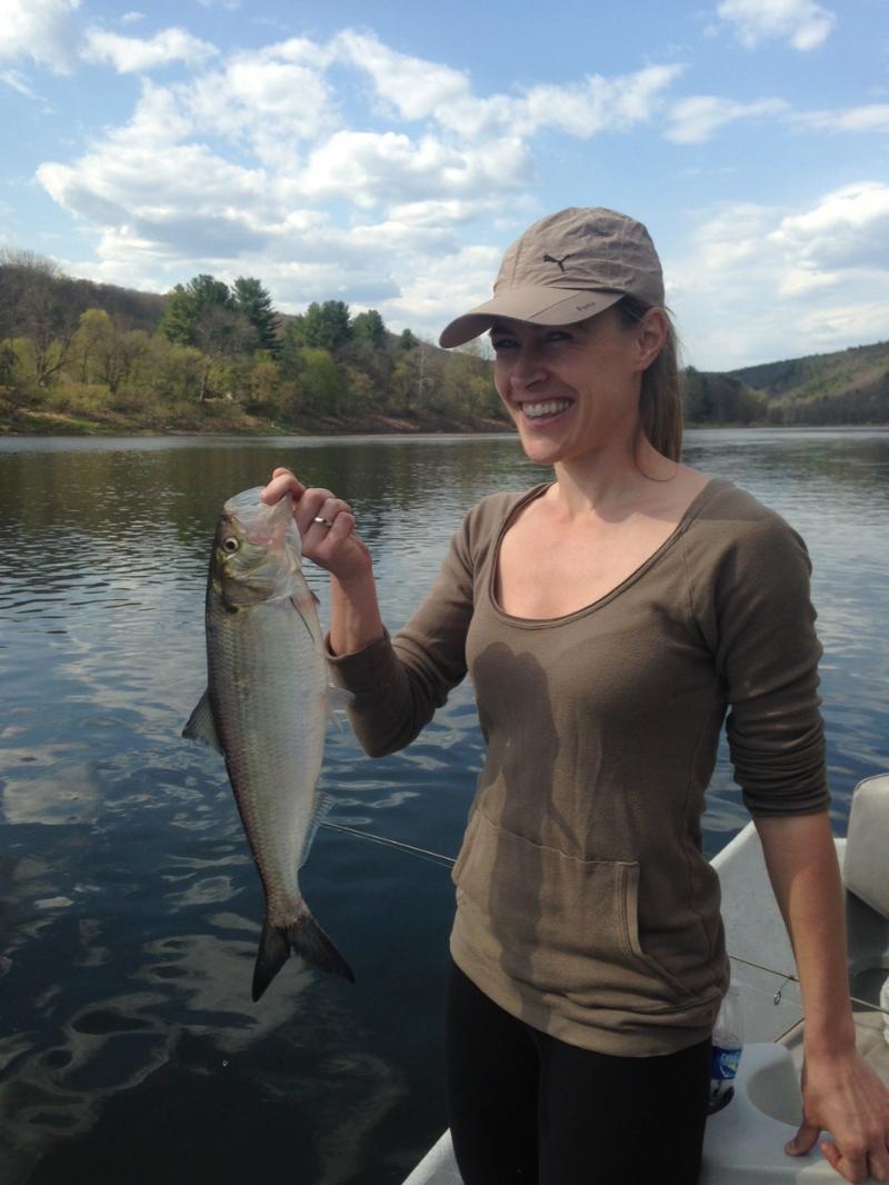 Lauren D. boats her first Shad ever! Nice work Lauren!