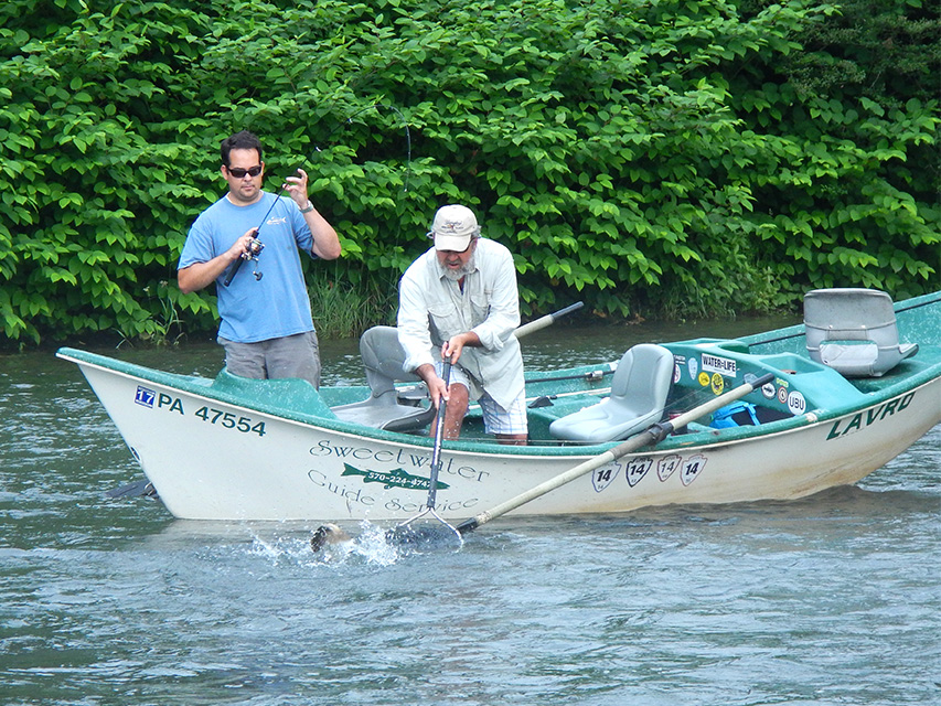 6/19/15 Guide Mike P. getting the net!