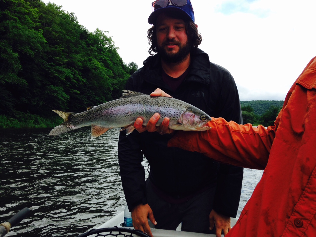 Ian slams this Wild Rainbow on a gold spinner.