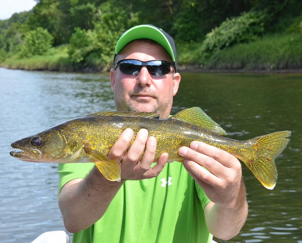 """8/6/15 Aaron L. with a nice 19"""" Walleye"""
