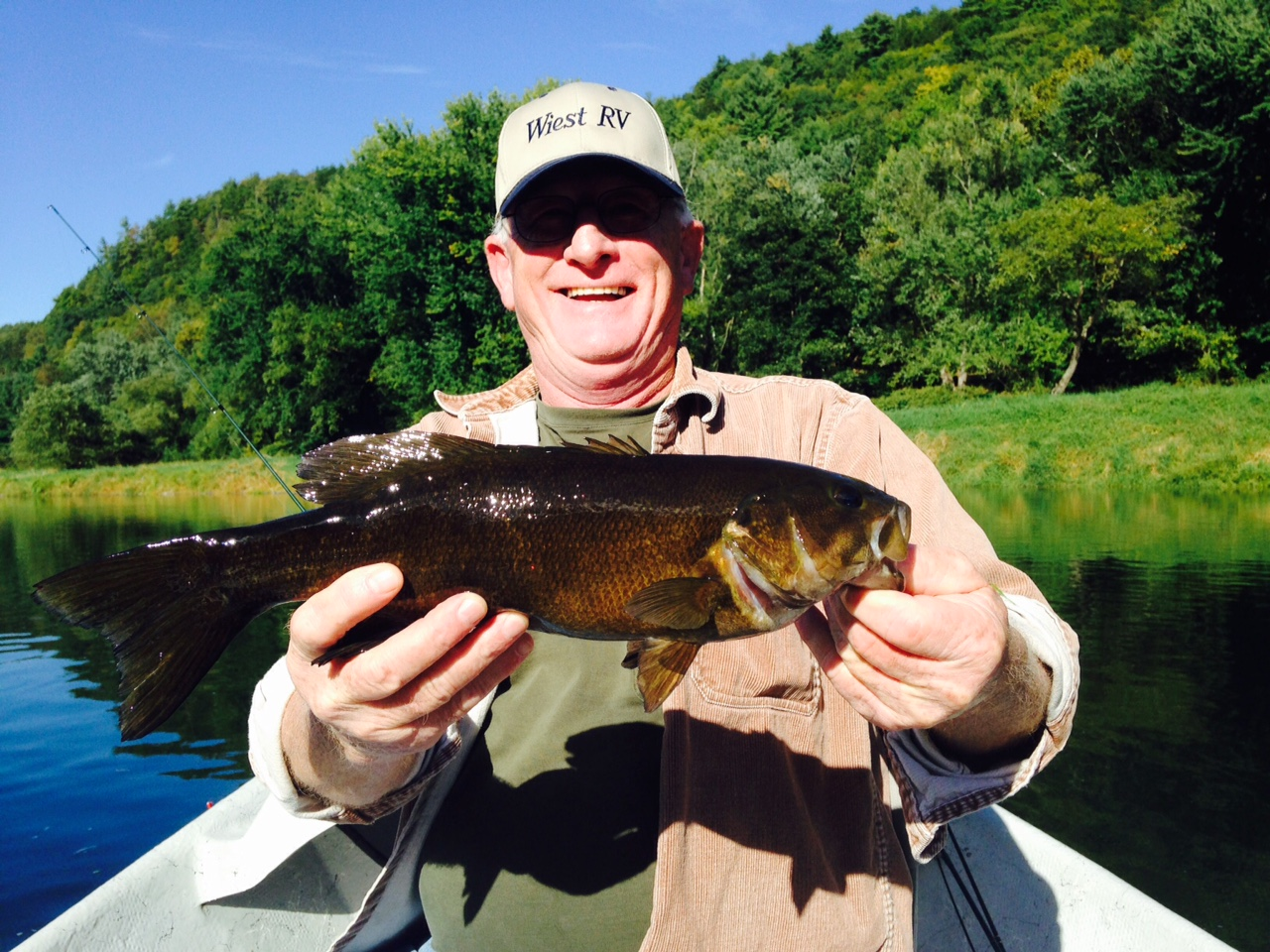 """9/27/15A nice 16""""Smallmouth bass finds the net!"""