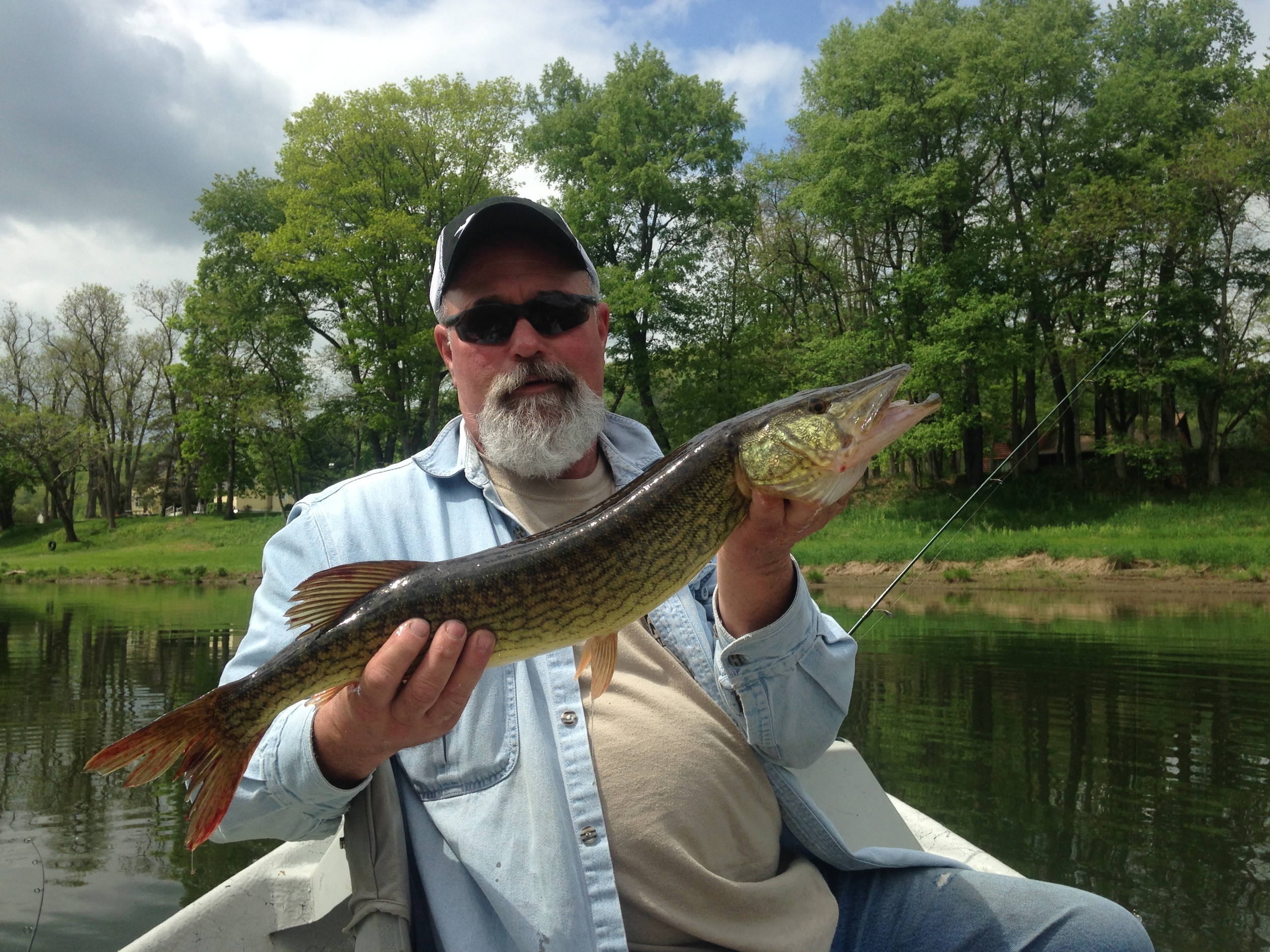 "Stan with a 26"" Chain Pickerel"