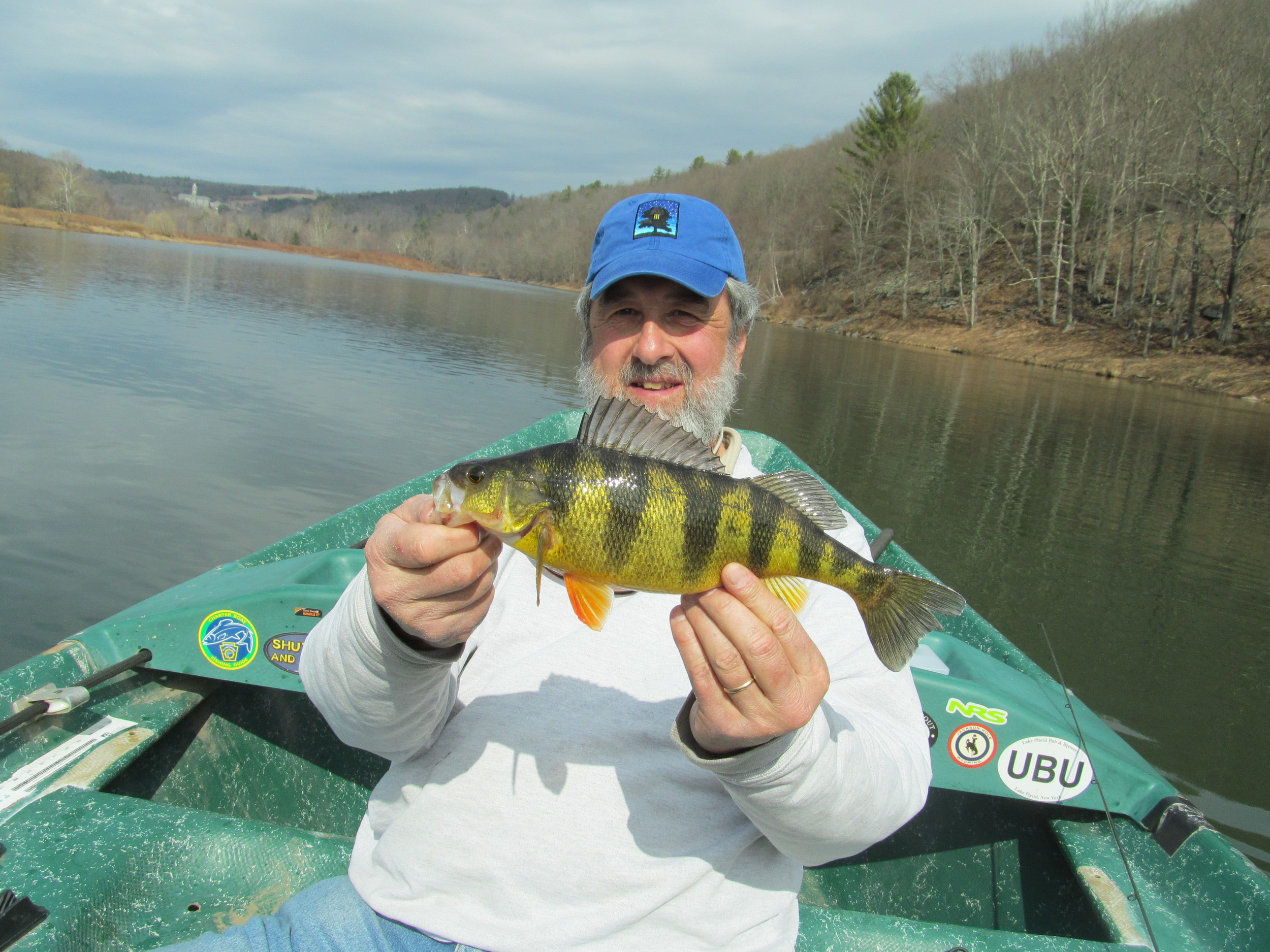 "3/8/16 Mike P. finds a nice 14"" yellow Perch."