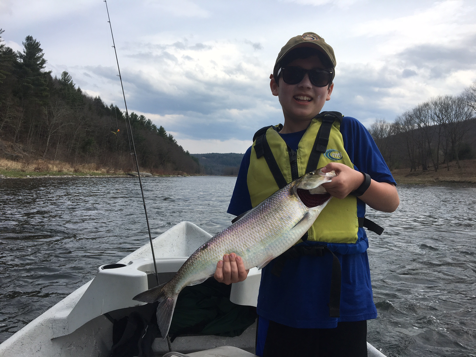 """4/22/16 Benny making it happen with this 23"""" Roe American Shad!!"""