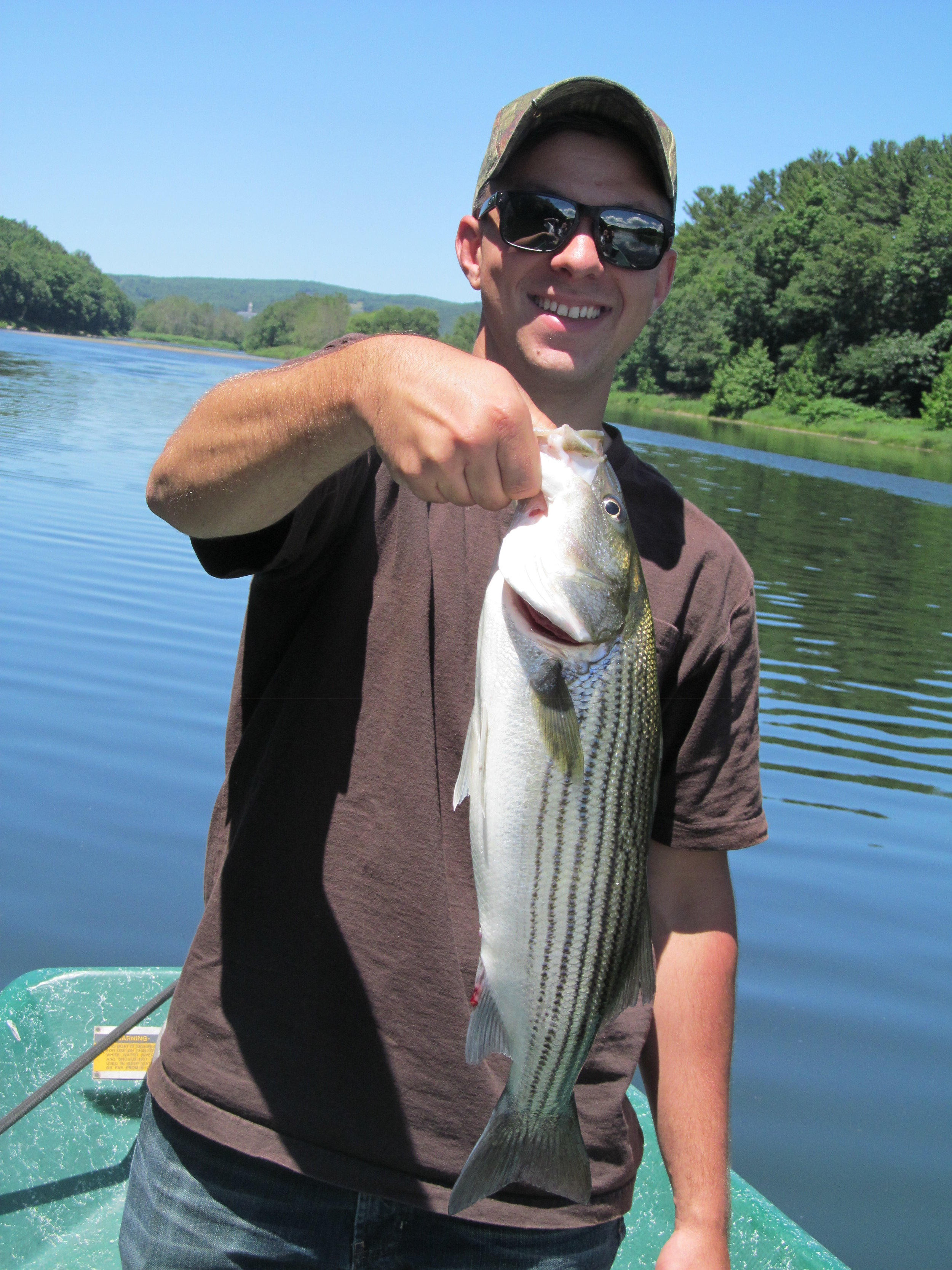 Stripers can be caught 300 miles from the ocean on the Upper Delaware River