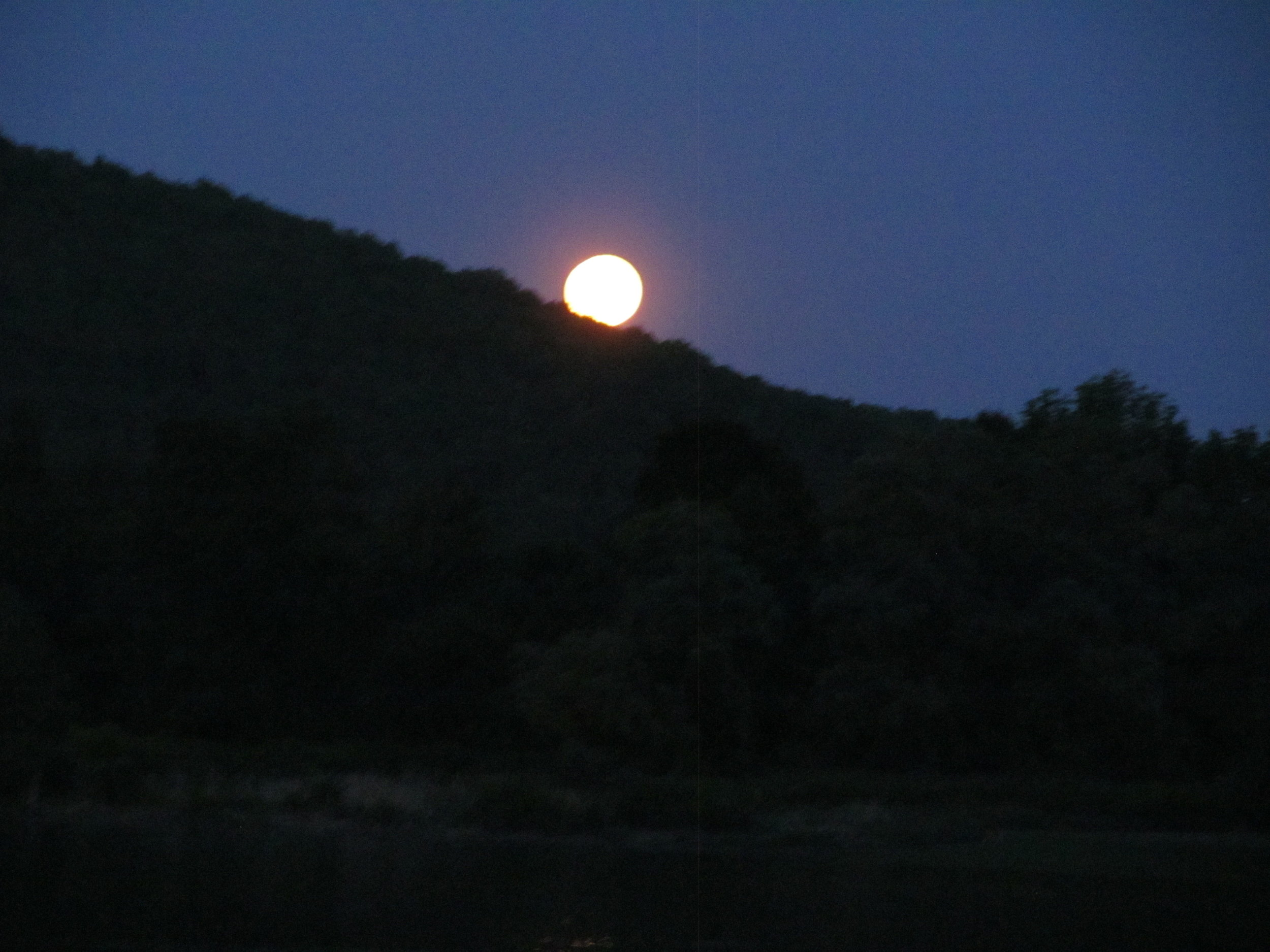Full moon fishing on the West Branch.