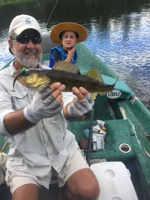 """A 20"""" Walleye for the little man."""