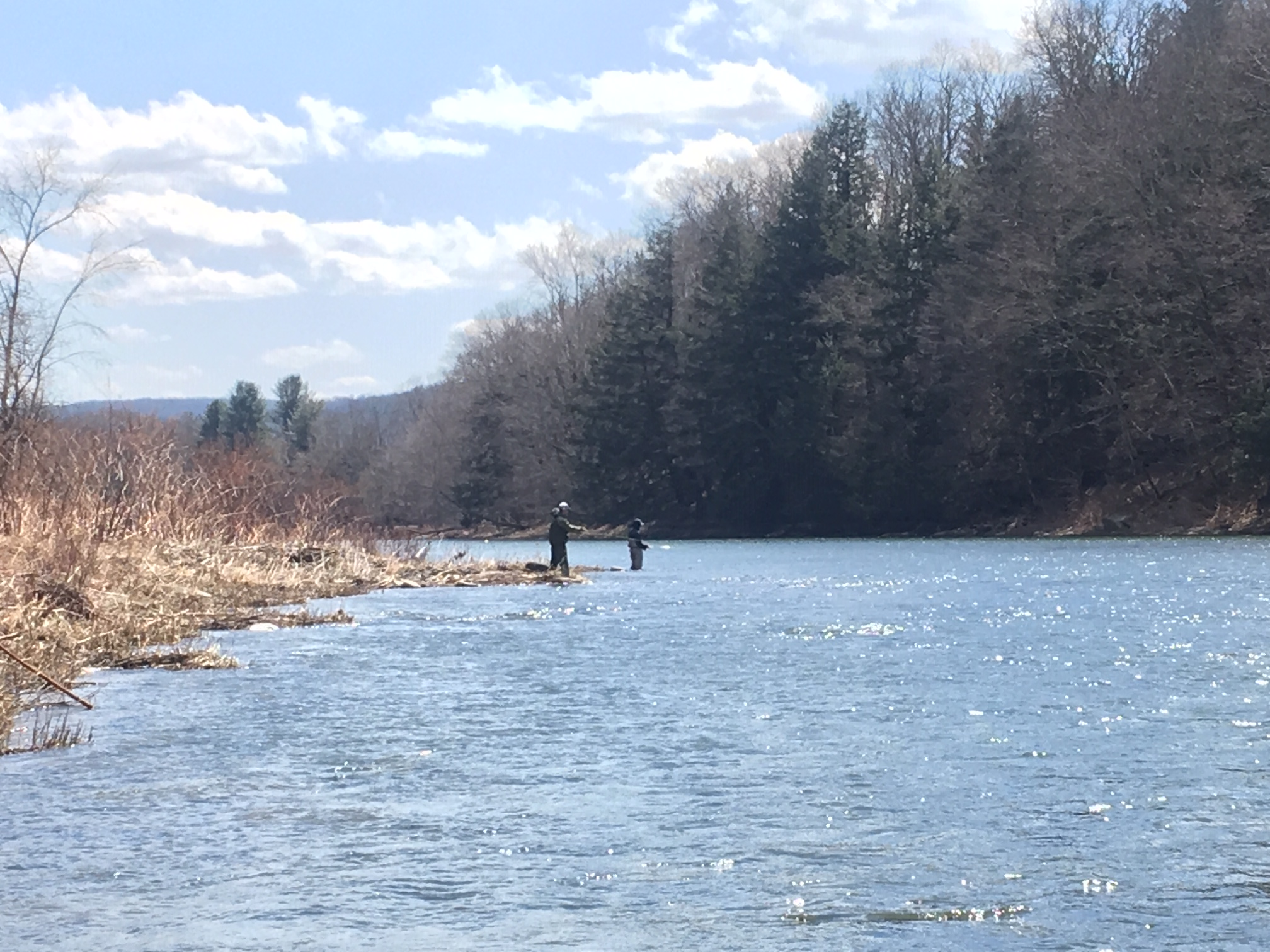 4/1/19 Guys working the Spring shoreline